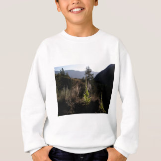 Mountainside Mullen Sweatshirt
