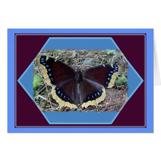 Mourning Cloak Butterfly Blank Note Card