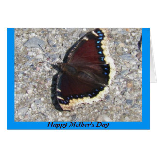 Mourning Cloak Butterfly Mother's Day Card