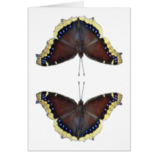 Mourning Cloak Butterfly - Nymphalis antiopa Greeting Card