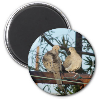Mourning Dove 2 Inch Round Magnet