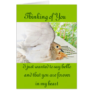 Mourning Dove-Any Occasions_ Greeting Card