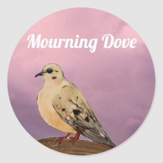 Mourning Dove Backyard Bird on Branch Classic Round Sticker