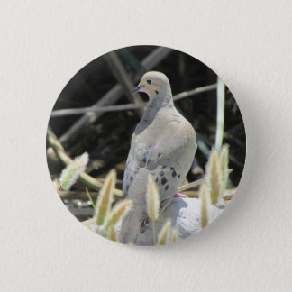 Mourning Dove Button
