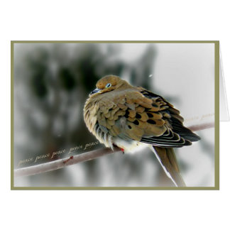 Mourning Dove Stationery Note Card
