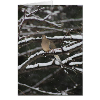 Mourning Dove in the snow Greeting Card