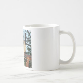 Mourning Dove Coffee Mugs