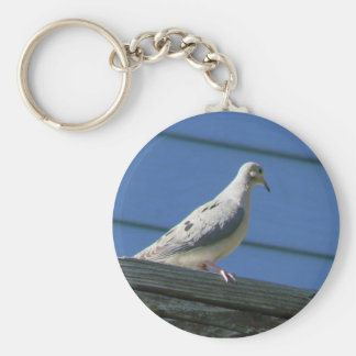 Mourning Dove on Deck Keychain