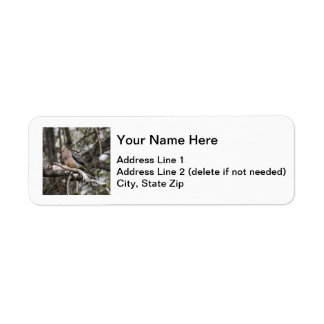 Mourning Dove Return Address Label