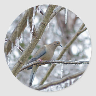 Mourning Dove Round Sticker