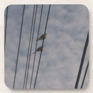 Mourning Doves on Wire Drink Coaster