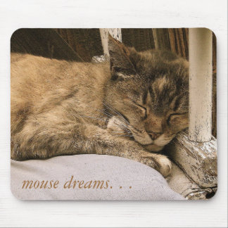 mouse dreams. . . mouse pad