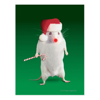 Mouse dressed as Santa Claus Postcard