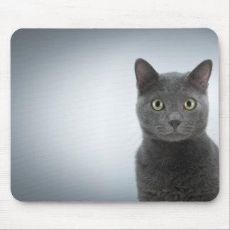 Mouse mat cat mouse pad
