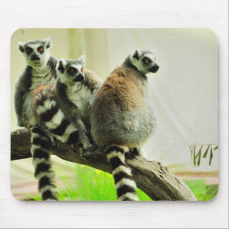 Mouse Pad - Lemur-Ring Tailed