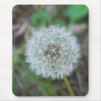 mouse pad of a beautiful dandelion on it