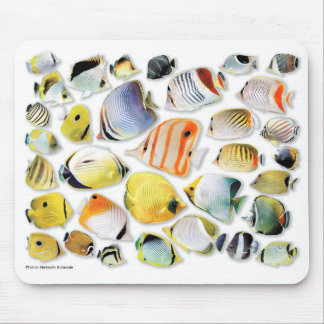 Mouse pad of butterfly fish No 05