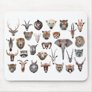 Mouse pad of face of animal, No.01