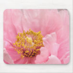 Mouse Pad: Pink Tree Peony