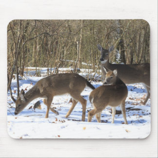 Mouse Pad - Whitetail Deer