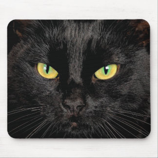 Mouse Pad with cat image