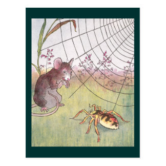 Mouse, Spider and Web in the Meadow Postcard