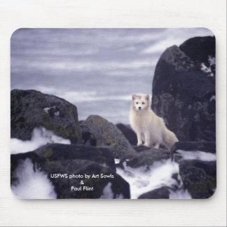 Mousepad / Arctic Fox