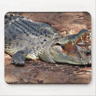 Mousepad - Crocodile