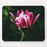 Mousepad de fleur tapis de souris