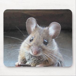 Mousepad de Moue Tapis De Souris