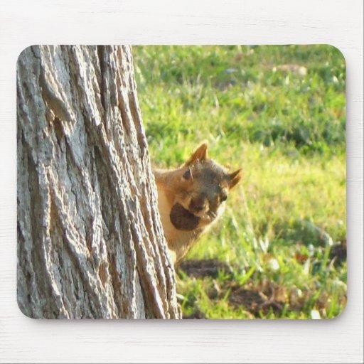 Mousepad d'écureuil tapis de souris