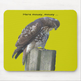 Mousepad - Falcon