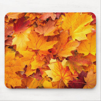 mousepad fall autum leafs