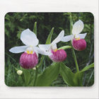 Mousepad-Lady Slipper Orchids Mouse Pad