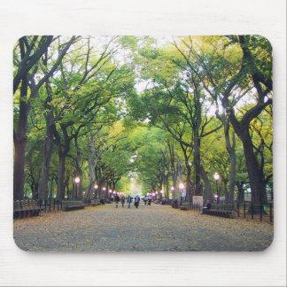 Mousepad - NY Central Park