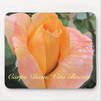 Mousepad--Orange Rose With Raindrops Mouse Pad