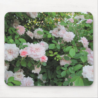 Mousepad Pink Roses