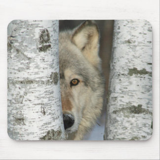 Mousepad with photo of gray wolf among birch trees