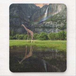 mousepad yosemite falls giraffe rainbow