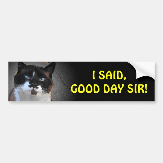 Moustache Cat Says You Good Day, Sir Bumper Sticker