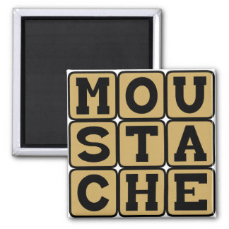 Moustache, Facial Hair Magnet
