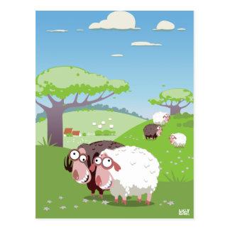 Moutons drôles cartes postales