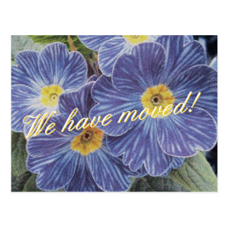 Moving postcards with blue flower design