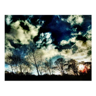 Moving Tree Silhouettes Against Dramatic Clouds Postcard