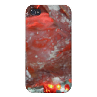 Mowlai Cover For iPhone 4