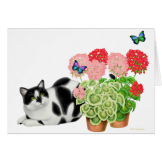 Moxie Cat and the Butterflies Card
