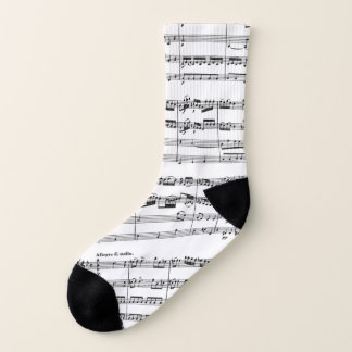 Mozart Music Socks 1