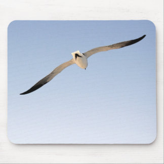 MP 6538 Seagull Watercolor Styel Mouse Pad