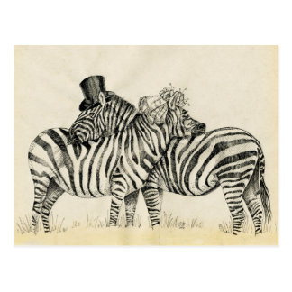Mr. and Mrs. Zebra Fancy couple Postcard