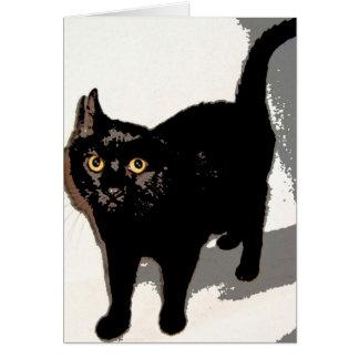 Mr. Black Card